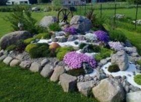 Värviline kiviktaimla